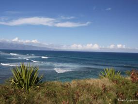 Мои прекрасные Гавайи